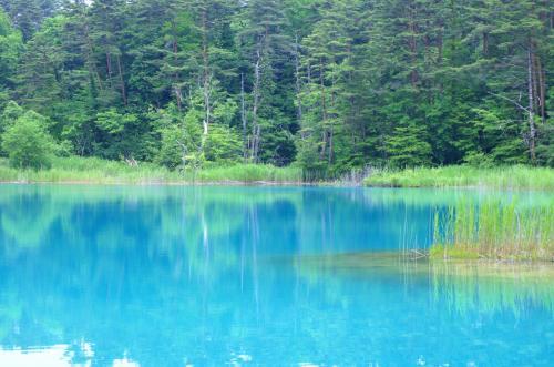 ◆瑠璃色のラビリンス・裏磐梯五色沼
