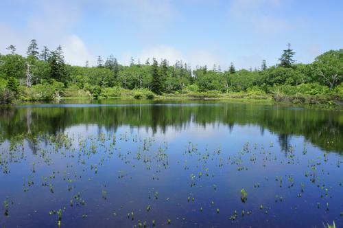 昆布温泉「杢の抄」に泊まってニセコの湖沼群を散策