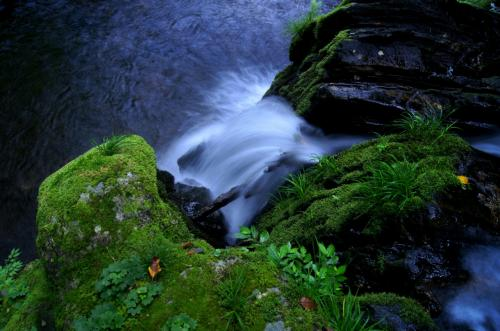 ◆北茨城市・花園&猿ヶ城渓谷の滝めぐり