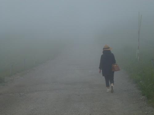 2016年避暑!~標高2000m雲上のホテルにて~今年は雨ではなく霧でした(T_T)