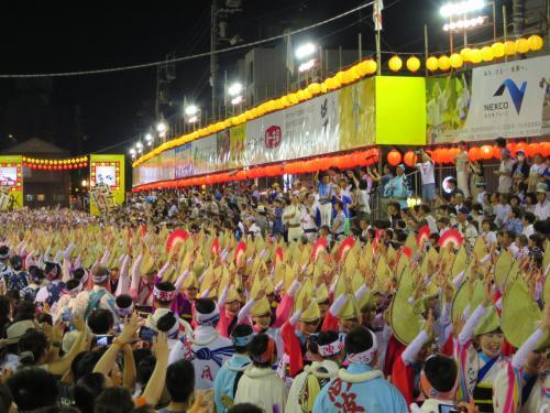 2016 べっぴん二拍子、夏盛り! 徳島阿波踊り(3/3)