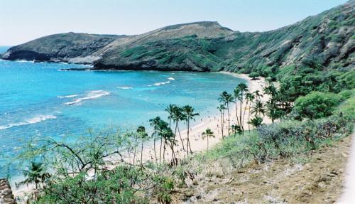 遠い昔に行ったハワイ。<br />まだデジカメを持っていなくて画質が悪いけど写真だけアップ。