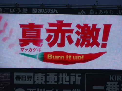 今年、広島の夏は暑かった~!<br />しかしもっと熱いのがカープファンではないでしょうか?<br /><br />長年低迷していた広島カープが、なんと25年ぶりに優勝します!<br />しかもあと数日のうちに(^^♪<br /><br />25年ぶりの優勝が待ちきれないのか、スーパーでは「それ行けカープ」の歌がエンドレスで流れ、カウントダウンセールも始まっています。<br />今広島はカープの赤一色です。<br /><br />9/1 広島カープVS横浜DeNA戦のチケットが手に入ったので、赤く染まるマツダスタジアムへ観戦に行ってきました(^^)/<br /><br />ーーー2016 キャッチフレーズ【真赤激】ーーー<br />「真赤」と「過激」を組み合わせた「真赤激」<br />カープ伝統の激しい練習に耐え、チーム一丸となり、赤く熱い気持ちで相手チームにぶつかっていく。 <br /> 大人しくまとまるのではなく、情熱あふれるプレーを心掛け、応援してくれるファンに「刺激的な野球」を届けていく。<br />ーーーーーーーーーーーーーーーーーーーーーーー<br /><br />この決意の元、戦ってきたカープ。<br />まさにこのキャッチフレーズ通り、何度も逆転勝ちをするなど熱いプレーでファンも大盛り上がり。<br />この日も劇的な逆転で見事勝利!<br />マジックも「9」になりました。<br /><br />7月くらいまでは「優勝」の2文字を心の中で期待しつつも確信が持てず、<br />まだ何が起こるか分からないから「優勝」を口に出して言ってはいけない。<br />広島ではそんな空気が流れていました。<br />でもここまで来たら解禁だ。優勝じゃ優勝じゃ、わ~いわ~い\(^o^)/