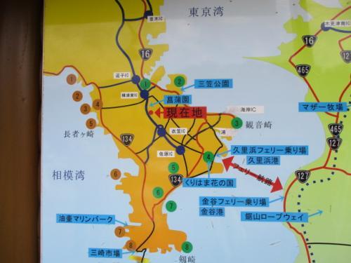 三浦半島半周 犬連れで観音崎、葉山海岸、稲村ケ崎 日帰りドライブ