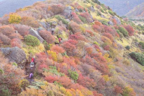秋色の九重連山(牧ノ戸峠~中岳~久住山)&ちょこっと黒川温泉