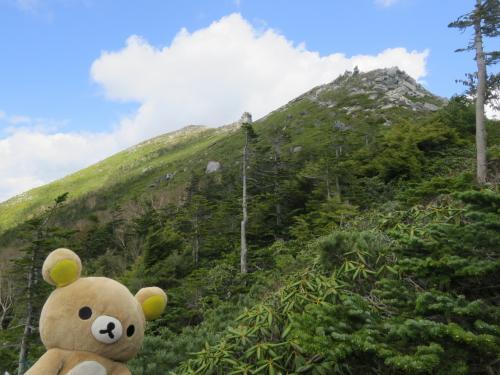 瑞牆山荘 から 金峰山 瑞牆山 を登るクマ(金峰山)