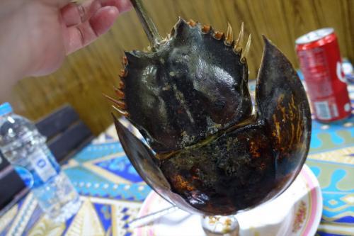カブトガニは甲殻類ではなく、カニよりはクモやサソリに近い生き物のよう<br /><br />大きな鎧の様な中に無数の玉子が入っていて焼いて蒸してそれをタイの酸っぱいドレッシングと和えて食べるのが一般的<br /><br />日本では天然記念物に指定されているので食べると逮捕される<br /><br />玉子の大きさはイクラより二回り程小さく弾力があり少し生臭さがある<br /><br />足などには身はまったくなく空洞<br /><br />尻尾の付け根に内臓らしきものがあるがここには毒があるそうで食べないそうだ<br /><br />まぁ、わざわざ食べたいとは思わない程度のおつまみ<br /><br />このカブトガニ、タイ語でメンダータレーというのだがこれは「ひも」という蔑視の意味を持つ<br /><br />オスよりメスが大きいことからつけられた名前だそうだが、しばしば飲み屋で名前を聞かれるときにポムチューメンダー「I am mender」<br />というと大いにうけるwww