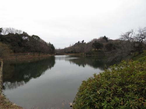 冬休み最終日、ぶらりと三ッ池公園を散歩してきました。実は去年買ったCanonのSX60HSの望遠を試してみたくて行きました。<br />