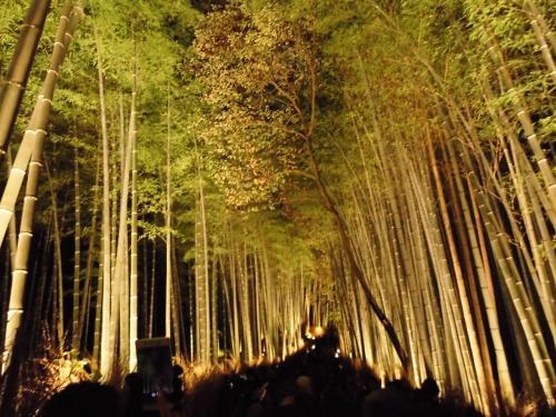 LCC春秋航空の成田ー関空線の格安キャンペーンチケットが取れたので、京都嵐山の花灯路を見に行くことにしました。成田までがおっくうですが、今回は車を駐車場に置いてさくっと出かけます。関空からは南海ー阪急のアクセスチケットがお得です。阪急嵐山から嵐山のイベント花灯路を堪能。翌日は早めに起きて、「たん熊」で朝がゆ。東山エリアで南禅寺、永観堂の最後の紅葉を楽しんで、午後サクッと成田へ帰還しました。