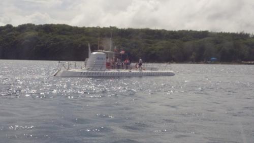 二日目。<br />この日午前中は父・母・息子組がダイビングへ。<br />ジジ・ババ・娘はアトランティスサブマリンツアーへ。<br />
