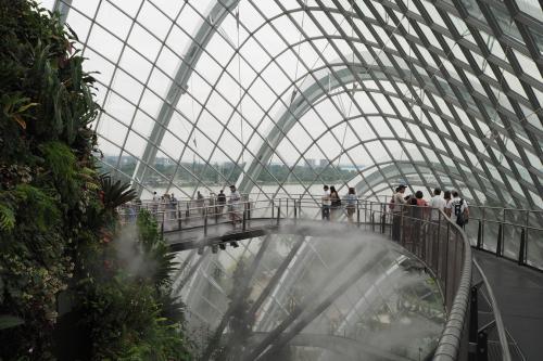 ちょこっと休暇をいただいてシンガポールへ行ってみました。<br />マリナーナベイサンズのインフィニティプールを満喫(^◇^)v<br /><br />1日目 家→羽田<br />2日目 羽田→機中泊→シンガポール 観光(シンガポール植物園、ガーデンズ バイ ザ ベイ、マーライオン公園) <br />3日目 ナイトサファリ マリアマン寺院、チャイナタウン  <br />4日目 セントーサ島 クラーク・キー サルタン・モスク<br />5日目 シンガポール→羽田→家<br />