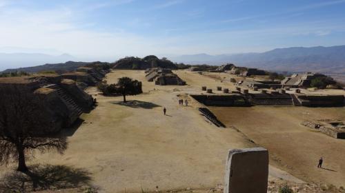 2017年のお正月休み、冬は暑い所に行こうと2度目のメキシコへ。前回はメキシコシティとユカタン半島を巡ったので、中央高原を中心に回りました。<br /><br />その3は世界遺産、モンテ・アルバン。紀元前500年頃から建設が始まった、小高い丘の上を平にして築かれた古代サポテコ族の祭礼センターで、最盛期には25000人もの人が暮らしたとのこと。人口増などが理由で850年ころから放棄され、ミトラを始めとする近隣の都市に分散したそうです。<br /><br />植民地時代には発見されなかったことから保存状態もよく、また考古学的に正しくないような修復は行われていないため、あえて基壇部分のみになっています。かつてはこの基壇の上に神殿が築かれていたのでしょう。<br /><br />有名な踊る人のレリーフは、一部は現場に、大半は併設の博物館に収められていました。実際には踊っているわけではなく、近隣の有力部族を従えた証拠として、征服した部族の位の高い人を拷問にかけたり処刑したりした様子が刻まれているとのことです。<br /><br />サポテコ族が放棄した後、14~15世紀にミステカ族が入り、墳墓として再利用しました。オアハカの文化博物館にあったヒスイの頭蓋骨や金製品などの副葬品は、モンテ・アルバンから出土していますが、このミステカ族のものです。<br /><br />・モンテ・アルバンを発見した人の記念碑<br />・ミステカ族の墓<br />・球技場<br />・大広場<br />・踊る人のレリーフ、レプリカと本物<br />・南の大基壇<br />・天文台<br />・ビオトープ<br />・北の大基壇<br />・オアヘやカサワテ、コパルなどの植物<br />・併設の博物館<br /><br />表紙写真は、モンテ・アルバン北側の最も高い場所からみた遺跡全景