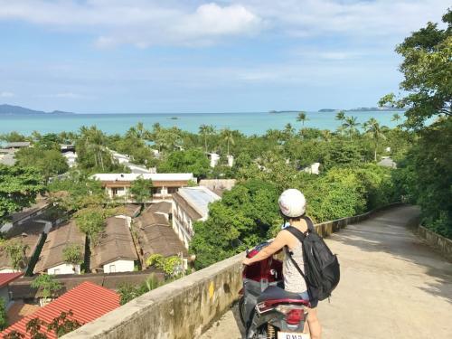勤続◯年のリフレッシュ休暇にて、オクサーンと旅をした。<br />旅行「その1」として、サムイ島に行ってきた。<br /><br />タイのリゾートといえばプーケットが有名。<br />サムイ島は日本人にはあまり知られていない。<br /><br />8月:早々と予約<br />10月:プミポン国王が亡くなる<br />12月末:乾季だがタイ南部が洪水でえらいことになってるニュースがw<br /><br /><br />サムイ島に行くまで若干不安だった。<br />暴動が起きて「おーいお前たち~、そろそろやめなさ~い」って言う人が居なくなった。<br />情勢が心配だった。 <br />黒い服を用意していったが特に出番もなく。<br />12月中頃からの連続雨でお正月は道が冠水してボートで移動してたそうな。<br />幸いにも僕らが行ったときには道はほぼ乾いており、久々に太陽が出た。とのこと。<br />日頃の行いが良すぎるんだろう(笑<br /><br /><br />生まれて初めてのタイ王国に入国、ロコな雰囲気を満喫してきた。<br />トラブルもなく、とても充実した楽しい旅だった。<br /><br /><br />【タスク】<br />この島でやりたい事は以下の4つ<br />1:本場のココナッツカレーを食う<br />2:ダイビング<br />3:バイクでツーリング<br />4:オンtheビーチのバンガローでのんびり<br /><br /><br />【費用】<br />・航空機1人分:¥60,200(空港税、サーチャージ込み)<br />・ホテル :¥53,300(4泊、税込み)<br />・ダイビング:¥23,100(7700バーツ)<br />・バイクレンタル:¥1,200(1台200バーツ/24Hr×2回)<br />・ガソリン:¥270(40+50バーツ)<br />・空港~ホテル:¥780(ミニバス130バーツ×2名)<br />・ホテル~空港:¥1,300(タクシー400バーツ+TIP)<br />・ご飯、お土産、ホテルやタクシーのTIPなど:約¥16,000<br />______________________<br /><br />1名のTOTAL:¥108,200<br /><br />(現地で両替したのは2万1千円のみ)<br /><br /><br />【メモ】<br />地元の人の足はバイク。<br />スクーターは安く簡単に借りれる。<br />この機動性を発揮してスーパーや市場へ行き、<br />そこで必要なものを買い、ご飯はナイトマーケットで。<br />旅を満喫するには郷に従え、っていうチープトリップ。<br /><br />プランニングして自己責任で楽しむ旅のスタイルは、<br />リスクもあるが思い出に残るものになる。<br /><br /><br />https://youtu.be/pHXzoyqKYIs<br />