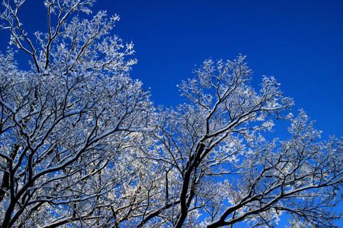 ◆清閑氷雪の小栗山池と八流の滝