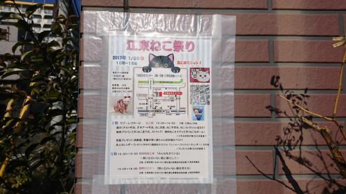 仕事帰りにたまたま見つけたポスターに惹かれて、江東ねこ祭りに行って来ました。