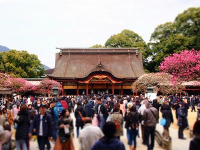 梅のシーズンを迎えた太宰府天満宮。<br />受験生で沢山の人が参拝されていました。<br />また毎月25日は天神様の日でヨモギ入りの梅が枝餅が販売されているので<br />それも楽しみに行ってきました。