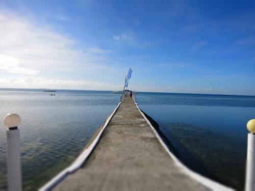 今年最初のダイ部です<br />OWを取得して最初のファンダイビングが2005年のセブ島(正確にはマクタン島)<br />カラフルな魚に囲まれてボートに戻ればテーブルに並ぶランチ、そりゃぁもう夢の時間を過ごした(記憶)<br /><br />ここ数年、間違いなしのフィリピンの海をホームグラウンドとして潜っている<br />今回も有給休暇消費でダイ部(超小集団の部活動)で2ヵ月前にも行ったセブへ飛んだ<br />最南端のリロアンへはクリアな海と珊瑚礁オスロブへも近いのでジンベエ目当て、モアルボアルへはイワシの群れ、そして2ヵ月前に行った最北端のマラパスクアではニタリザメと目的があって潜るのだけど、今回は特に無し。<br />初心に返って殿様&姫様ダイビングを楽しもう♪<br /><br />写真は皆さんの旅行記の表紙に出てくるパシフィックセブリゾートの桟橋にしてみました。<br /><br />【参考】***********************************************************<br />STW ダイビングツアー<br />『フィリピン航空利用 価格重視にお勧め P.C.Divers利用で4ボートダイビング パシフィックセブリゾート宿泊4日間』<br /><br />旅行代金 63,800円(旦那:74,800円一人部屋)<br />現地税・空港税 2,850円<br />中部国際空港使用料 2,570円<br />前回のマラパスクアアンケート割引 -1,000円<br /><br /> ツアー代金合計 68,220円(旦那:79,220円)<br /><br />ポイント変更追加料金 P3,375/人<br />カメラ税 P200/人<br /><br />