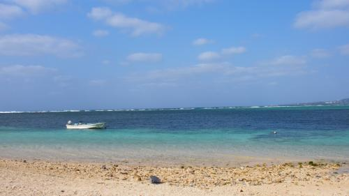 今年も来ちゃった! 沖縄!!<br />野球好きなダンナのために、またしても、またしても、この季節!<br /><br />今回の旅行は、デルタ航空のマイルが貯まっていたので、JTBの旅行券と引き換えて、<br />4泊5日のツアー(レンタカー付き)を選んでみました♪<br /><br />【今日のルート】<br />中部国際空港セントレア ⇒ 那覇空港 ⇒ (食事)空港食堂 ⇒<br />(宿)パシフィックホテル沖縄 ⇒ 沖縄セルラースタジアム那覇 ⇒<br />(食事)赤とんぼ ⇒ (食事)イル・パティオ ⇒ (宿)パシフィックホテル沖縄