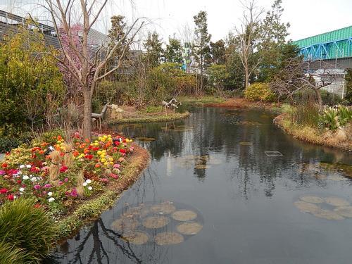 3月8日、午後2時半頃に池袋で買い物があり東武百貨店及び西武百貨店を訪問した。その序に西武百貨店の9階にある「食と緑の空中庭園」を訪問し、「睡蓮の庭」を見た。 今まで数回訪問しているが、初春の花に彩られたのを見るのは初めてであったがアネモネやラナンキュラス等が素晴らしかった。<br /><br /><br /><br />*写真はアネモネやラナンキュラス等の春の花が咲いている睡蓮の庭