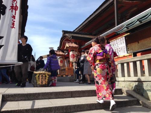 「こっちよ、そう、そのまま真っ直ぐ!」<br />と誘導の声が上がるのは海辺のスイカ割りではない。清水寺の本堂を抜けて左手の縁結びの神様として名高い地主神社。狭い境内に内外の観光客が詰めかけている。和装の男女も多い。中国語や韓国語の声も交じり着物人気はもうインターナショナルにエスカレートしている。<br /> さて声は「恋占いの石」の方からだ。目をつぶった和装女子がそろそろと歩いている。「こっちよこっち」と友達に助けてもらって向かう先は占いのゴールである。<br /> 「恋占いの石」とは本殿と拝殿の通路に置かれた一組の石である。ひとりで抱えきれない大きさの石が奥と手前に一基ずつ。この十メートルほどの間を反対側に無事にたどり着ければ恋が成就するといい伝えられている。人に手伝ってもらってはご利益も半減。恋の成就も一人ではできないという触れ込みだ。<br />「はい、オッケー」と向こう側で歓声が起こり手を取り合って黄色い声を弾けさせている。遊園地でゲームを成功させたかのようなノリである。<br /> 世界的観光地京都の中でもとりわけ清水寺の人気は高い。嵐山方面と人気を二分しているが、土日ともなれば朝十時前には土産物屋が軒を連ねる長い坂にバスや人が押し寄せ、本堂のいわゆる「舞台」も鈴なりに見物人であふれかえる。<br /> 木造建築物としても日本最大級でしかも世界遺産。そしてあの木組みの柱が谷底から支える豪壮さである。ピラミッドや万里の長城に引けをとらない人類の造営による貴重な堂宇である。日本人でなくとも一度は見ておく値打ちは十二分にある。<br /> どこの国へ行っても寺や神社、教会など宗教建築物は観光地であり、訪れる人が廃れては歴史的な価値を失ってしまう。大なり小なり物見遊山の気分がないとやってられない。きゃーきゃーと歓声が上がる活気が悪いとは言わない。神様も賑やかな方がお喜びになるが、公園で鬼ごっこしているような情景に少し違和感を覚えているだけである。<br /> 遊び心満載の寺もなんか変だし、あくまでも寺は寺なので宗教的価値を全面に押し出せばとっつきにくい。<br /> 地主神社の場合、特に「彼」「彼女」という若者の最大の関心事を神事にかけ合わすからに目隠しゲームに拍車がかかってしまっているのだろう。<br /> ただもう、東山の麓はディズニーランドかUSJかというぐらい観光装置は充実している。<br /> 北の円山公園と八坂神社を起点に南へ延びる線上には北政所ねねの高台寺があり、坂本龍馬が眠る霊山護国寺、ランドマークの八坂の塔、情緒にとんだ産寧坂そして清水寺と見どころ満載のエリアである。人力車が走り、土産物、食べ処も人気店が目白押しで、石畳の坂道を和服姿でアイスクリームを舐めながら逍遥する場所である。<br /> 界隈に紛れ込むとテーマパークにいるような幻想を覚える。それは魔法をかけられた世界で呪文は「古都」である。<br />