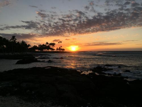 主人の会社のご褒美旅行で、一週間のハワイ旅行へ♪<br />現地でお小遣いも頂き、出費ゼロというステキな一週間でした(^-^<br /><br />真っ青な空と海、白い雲・・・<br />最高のリラックス旅行となりました。<br /><br />宿泊したフェアモント・オーキッドはビーチが美しく、夕日が最高の素晴らしいホテルでした。<br /><br />ご褒美をいただけるくらいがんばってくれた主人に感謝です!!<br />今考えると、この旅行を最後に夫婦二人きりの旅行は当分なさそうので、良い思い出となりました。<br /><br />■ハワイ島でのんびり①<br />http://4travel.jp/travelogue/11222913<br />Day 1:フェアモント・オーキッドでのんびり<br />Day 2:ホテルでシュノーケリング、ランチはザ ショップス アット マウナ ラニのトミーバハマのレストランへ。ディナーはマウナ ラニ ベイ ホテルのカヌーハウス。<br /><br />■ハワイ島でのんびり②<br />http://4travel.jp/travelogue/11223179<br />Day 3:ケアラケクア湾でシュノーケリング、ホテルで星空ピクニック<br />Day 4:強風でホエールウォッチングは中止、ホテルでまったり & ショッピングモールへ ディナーはルースズ クリス ステーキ ハウス<br /><br />■ハワイ島でのんびり③<br />http://4travel.jp/travelogue/11223389<br />Day 5:ホテルでシュノーケリング、午後はホエールウォッチングへ<br />Day 6:帰国