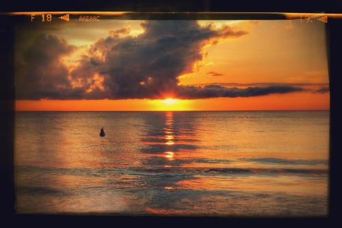 コタキナバルの夕日は格別綺麗でしたよ。<br />暗くなるまで時を忘れ眺めてしまいました。