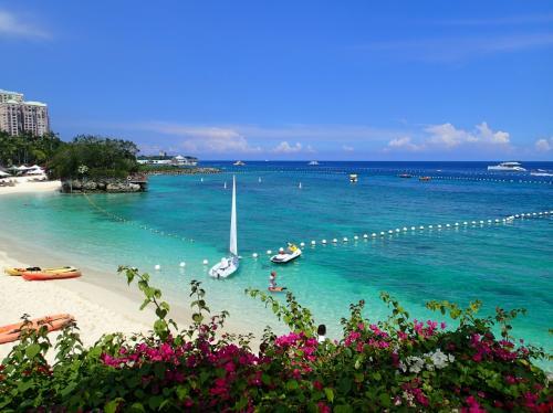 去年は、台湾にハマって海から若干離れ気味でしたが やはり「青い海」が恋しくなり行ってきました。フィリピンのセブ島!!<br />「セブ」を選んだのは、ジンベイザメに会えるからです。<br /><br /><br />今回も 引き続き「一人旅」です。<br />もうすっかり「一人旅」ハマってるので 「誰かと行く」と言う選択肢はありませんでした!<br /><br /><br />★ 日程 2017年3月11日~3月15日 (4泊5日)<br /><br />1日目 PM15時20分発 フィリピン航空  直行便 (中部国際空港発)<br /><br />・セントレア内でランチ<br />・ペソへ両替<br />・SIMカード購入<br />・タクシーでホテル移動<br />・明日に備えて早く寝る<br /><br />2日目 <br /><br />・朝2時に起きる<br />・タクシーでサウスバスターミナルへ<br />・バスでオスロブへ(移動4時間程度)<br />・オスロブでジンベイザメダイビング<br />・オスロブでジンベイザメシュノーケル<br />・マッサージ<br /><br />3日目<br /><br />・ダイビング3本(ブルーコーラル利用)<br />・NuatTHhaiマッサージ<br />・スーパーでお買い物少々<br />・ホテルの夕食<br /><br />4日目<br /><br />・シャングリラホテル デイユース+ボートダイビングパッケージ(7000ペソ)<br />  ダイビング1本(スコティーズダイブセンター利用)<br />  シャングリラ内「タイズ」でランチ<br />  シャングリラのプライベートビーチでシュノーケル<br />・シャングリラホテル内 高級スパ「CHIスパ」2時間半 (9315.85ペソ)<br /><br />5日目 <br /><br />・帰国<br /><br /> AM9時15分発 フィリピン航空 直行便 (中部国際空港着)<br /> <br /> 往復料金 44710円<br /><br />★ 宿泊先 モーベンピックマクタンアイランドセブ 4泊 54800円<br /><br /><br />お天気にも恵まれ充実した旅行になりました。