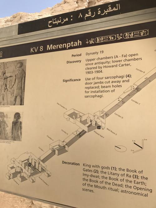 G.Wを利用しエジプトに一人旅<br />アスワン→★ルクソール→カイロ<br /><br />ガイドがルクソール西岸の遺跡近くに住んでいるため親戚や兄弟や知り合いが多く遺跡での1ダラー攻撃は一切なかった<br />さらに王家の谷では一眼カメラも持ち込めました