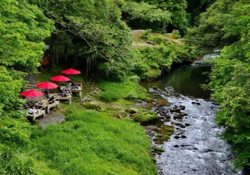 今回の加賀紀行は金沢市内観光がメインになるのですが、敢えて金沢への交通アクセスの良くない山中温泉を宿泊地に選んだのにはそれなりの理由があります。<br />山中温泉街に沿って流れる大聖寺川の渓谷にあるこおろぎ橋から黒谷橋に至る1.3kmの区間は鶴仙渓と称され、渓谷沿いには散策のための遊歩道が整備されています。北陸随一と称する渓谷美を誇る名所であり、四季折々の景観と砂岩の浸食によって立ち並ぶ奇岩怪石や3つの橋巡りが愉しめるマイナスイオン系のパワースポットでもあります。<br />鶴仙渓の名は、明治時代の3筆のひとり、書家 日下部鳴鶴(くさかべ めいかく)が好んだ渓谷だったことに由来します。鳴鶴は、書の本場中国でも「東海の書聖」と称された文化人であり、山中温泉をこよなく愛した数多の文人墨客のひとりです。また、『おくのほそ道』の旅の途中、ここに立ち寄った松尾芭蕉も「行脚の楽しみここにあり」とことのほか気に入って9日も滞在しました。温泉の句をあまり残さず、温泉嫌いという説まであった芭蕉が魅了された謎が解けていきます。渓谷の自然美と和の情緒が調和する静謐な空間は、まさに芭蕉が旅をしていた時代にタイムスリップしたかのようです。<br />渓流のせせらぎに耳を傾け、山紫水明な景観に見惚れ、芭蕉のように心を研ぎ澄ます旅へ出かけてみませんか?<br />山中温泉街、鶴仙渓のマップです。<br />https://www.yamanaka-spa.or.jp/wp-content/themes/yamanaka/images/download/pdf/pamphlet1.pdf