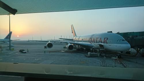 成田空港からバルセロナに向かう途中にドーハにトランジットで過ごしました。<br /><br />外に出ようとおもいましたが、気温がとても夜と思えないのでおとなしく空港の中ですごしました。<br /><br />