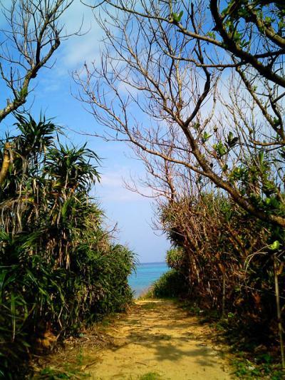 ケータイカメラで見た黒島への道
