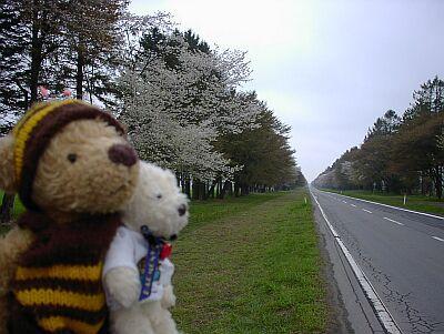 春の北海道に行ってきたよ~! その1