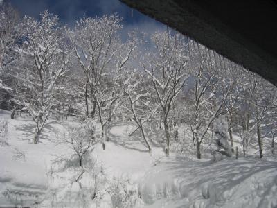 奥志賀でスキー
