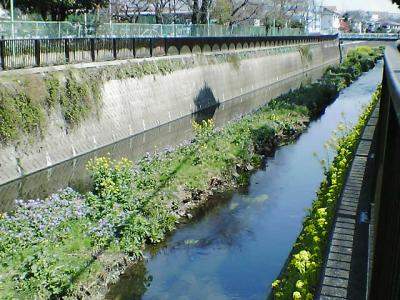 東京・世田谷区の裏道を散策・・