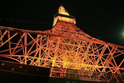 東京夜景巡り 東京タワー&東京ドーム