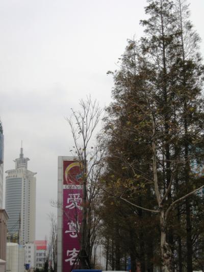 2006暮、中国旅行記11(5):12月8日(4)青島・青島市内散策