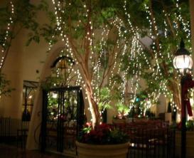 TDR クリスマス・ライトアップやらその他いろいろ