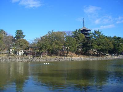 新春の古都 奈良(★世界文化遺産:興福寺)