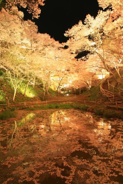 NAVER まとめ[信州]日本三大桜名所 高遠城址公園