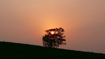 2008/5 美瑛の風景と夕日