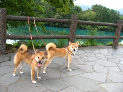 福島・那須旅行