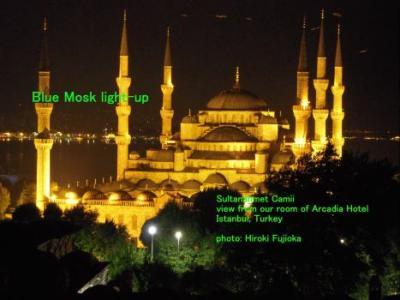 トルコ (イスタンブール、パムッカレ、イズミール)