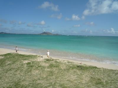2島ドライブ★雨のハワイ島&晴天オアフ島の碧い海