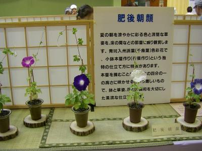 今月の名古屋城「名古屋あさがお祭り」