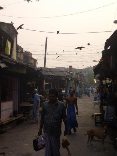 India -Part3 (in Kolkata)