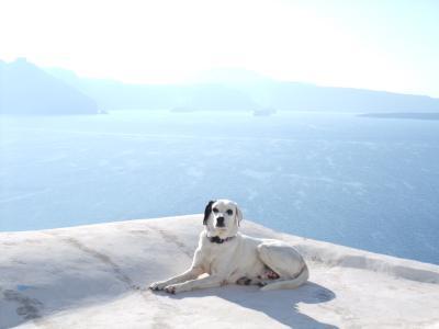 ギリシャサントリーニ島 一人旅 (その1)