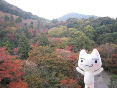 京都に行ってみたよ~☆ 3