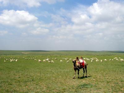 中国2004 ~フフホト~ 内モンゴル 大草原