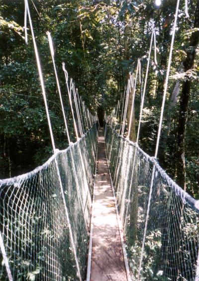 マレーシア、タマンネガラで、ジャングル・ステイ