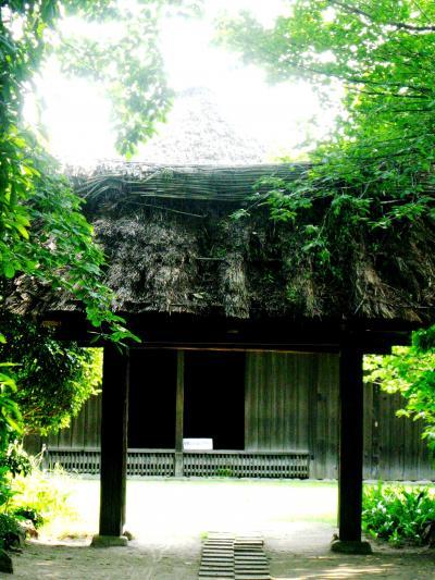 清水公園-5 旧花野井家住宅は重要文化財 ☆小金牧の管理役で